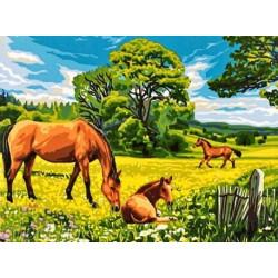 Солнечный луг, картина по номерам на холсте 30х40см 23цв Original