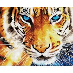 Взгляд тигра, алмазная мозаика на подрамнике 40х50см 34цв полная выкладка PO