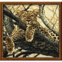 Леопард, набор для вышивания крестиком, 60х60см, нитки шерсть Safil 17цветов Риолис