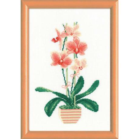 Желтая орхидея, набор для вышивания крестиком, 21х30см, мулине хлопок Anchor 12цветов Риолис