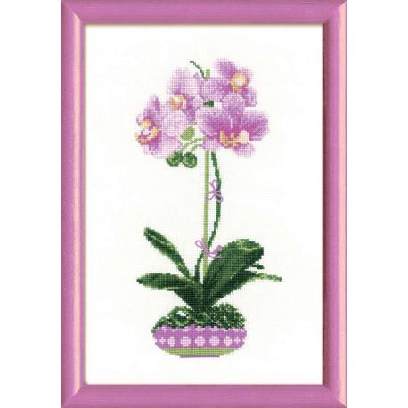 Сиреневая орхидея, набор для вышивания крестиком 21х30см мулине хлопок Anchor 13цветов Риолис