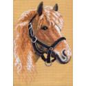 Лошадь, канва с рисунком для вышивки нитками 24х35см. Матрёнин посад