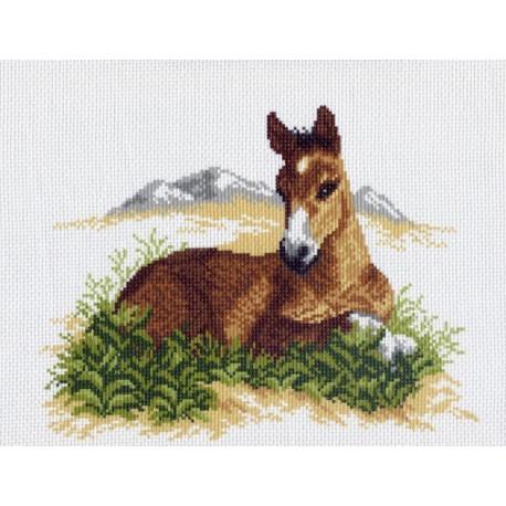Конь в траве, канва с рисунком для вышивки нитками 24х35см. Матрёнин посад