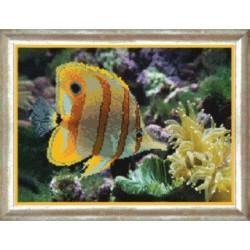 Рыбка, ткань с рисунком для бисера,Чарiвна Мить 29.5x21.5 см