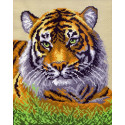 Туранский тигр, канва с рисунком для вышивки нитками 28х34см. Матрёнин посад