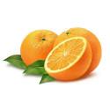 Апельсин в шоколаде, парфюмерная композиция 10мл