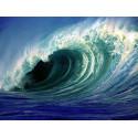 Морская свежесть, парфюмерная композиция 10мл