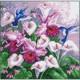 Колибри в цветах, канва с рисунком для вышивки нитками 41х41см. Матрёнин посад